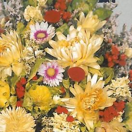 Mélange de fleurs séchées...